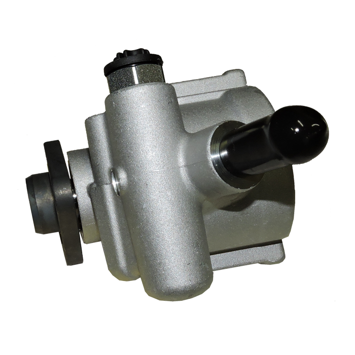 Steering Pump for a Fiat Palio